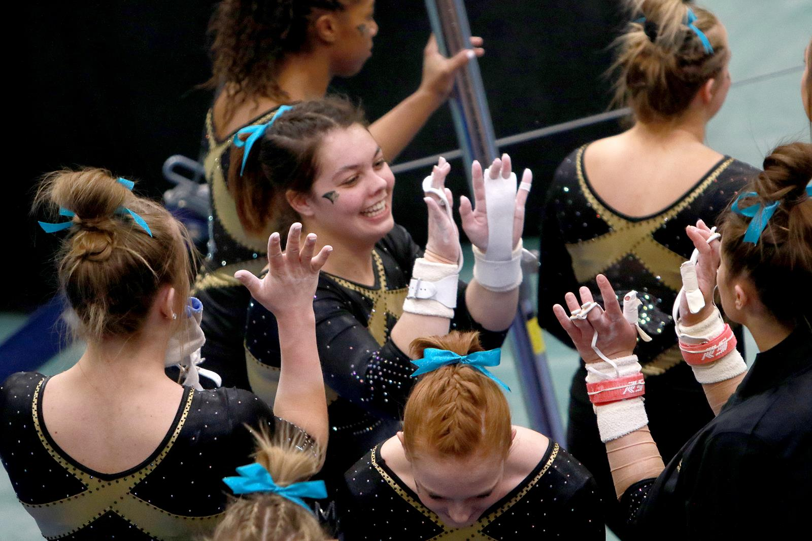Ryan Henry Leads Gymnastics At Mardi Gras Invitational